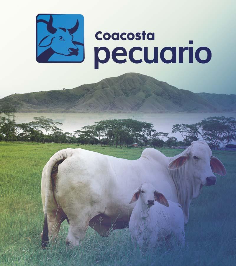 pecuario-trailer
