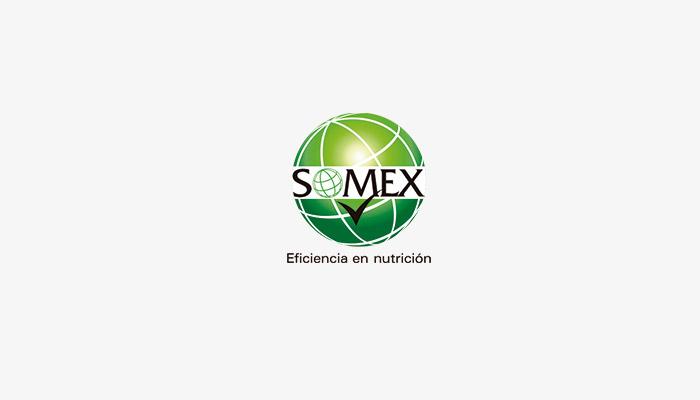 somex-logo