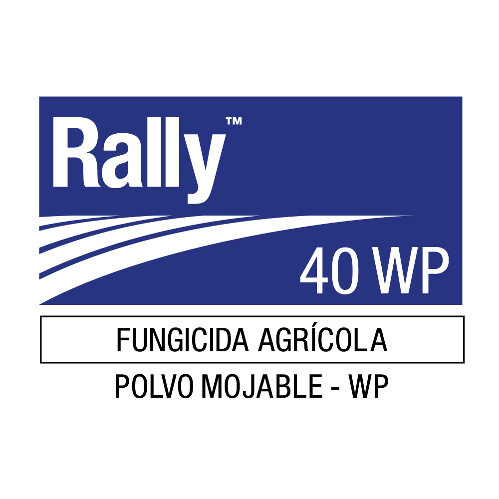 RALLY-40-WP