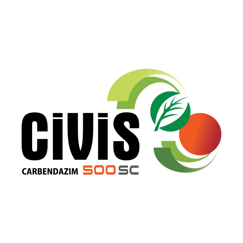 civis500